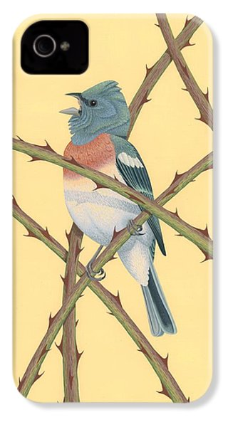 Lazuli Bunting IPhone 4 Case by Nathan Marcy