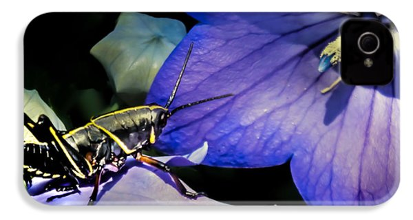 Contemplation Of A Pistil IPhone 4 / 4s Case by Karen Wiles