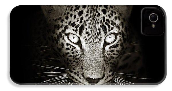 Leopard Portrait In The Dark IPhone 4 Case