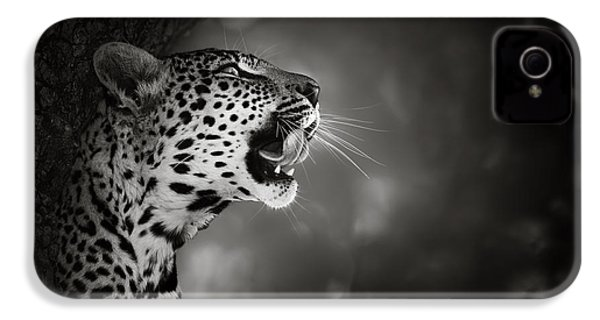 Leopard Portrait IPhone 4 Case by Johan Swanepoel