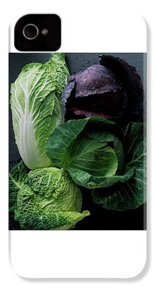 Lettuce IPhone 4 Case
