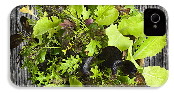 Lettuce Seedlings IPhone 4 Case