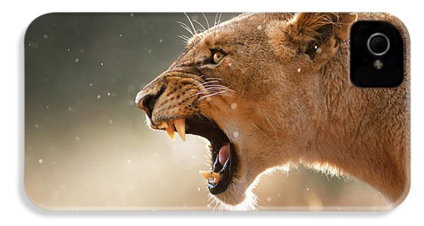 Lioness Displaying Dangerous Teeth In A Rainstorm IPhone 4 Case by Johan Swanepoel