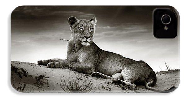 Lioness On Desert Dune IPhone 4 Case