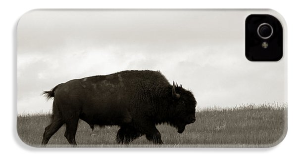 Lone Bison IPhone 4 Case by Olivier Le Queinec