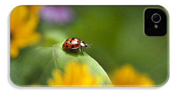 Lonely Ladybug IPhone 4 Case by Christina Rollo