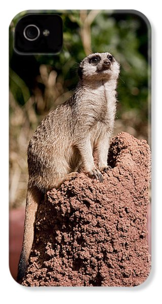 Lookout Post IPhone 4 Case by Michelle Wrighton