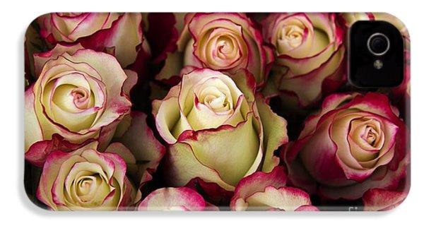 Love Is A Rose IIi IPhone 4 / 4s Case by Al Bourassa