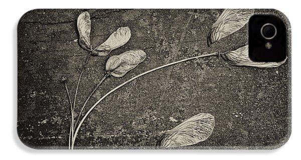 Maple Tree Whirlybirds IPhone 4 / 4s Case by Tom Mc Nemar