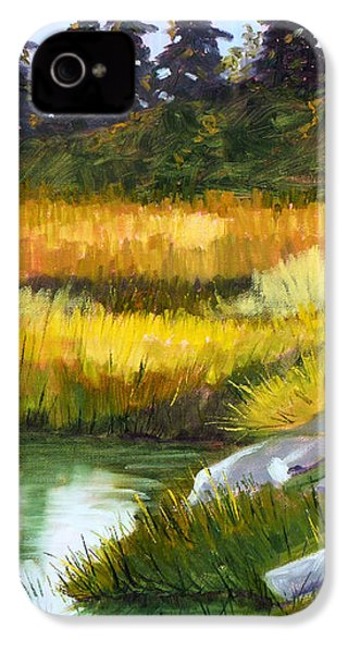 Marsh IPhone 4 Case by Nancy Merkle