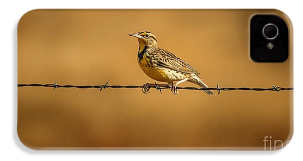 Meadowlark And Barbed Wire IPhone 4 Case by Robert Frederick