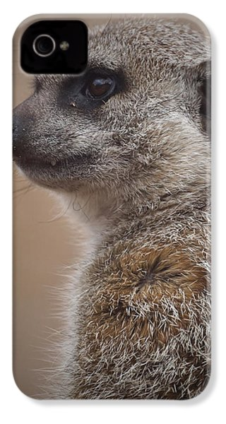 Meerkat 9 IPhone 4 Case by Ernie Echols