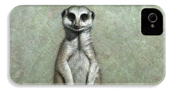 Meerkat IPhone 4 Case by James W Johnson