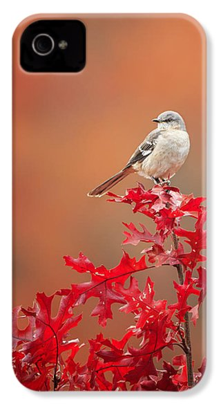Mockingbird Autumn IPhone 4 Case by Bill Wakeley