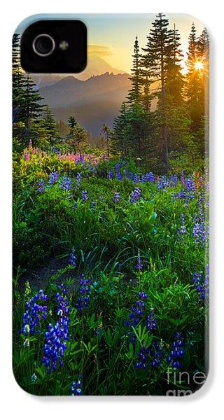 Mount Rainier Sunburst IPhone 4 Case by Inge Johnsson