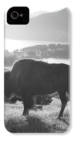 Mountain Wildlife IPhone 4 / 4s Case by Pixel  Chimp