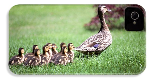 Mumma Duck And Kids IPhone 4 / 4s Case by King Wu