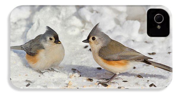 Nice Pair Of Titmice IPhone 4 / 4s Case by John Absher