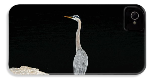 Night Of The Blue Heron 2 IPhone 4 Case by Anthony Baatz