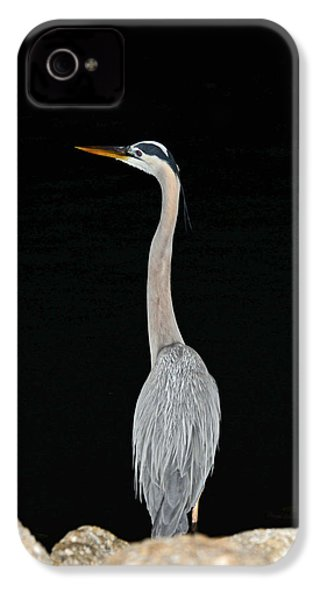 Night Of The Blue Heron 3 IPhone 4 Case by Anthony Baatz
