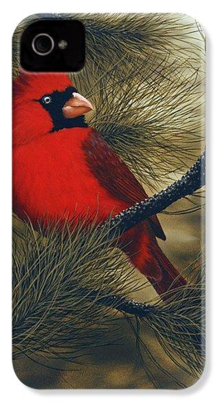 Northern Cardinal IPhone 4 / 4s Case by Rick Bainbridge
