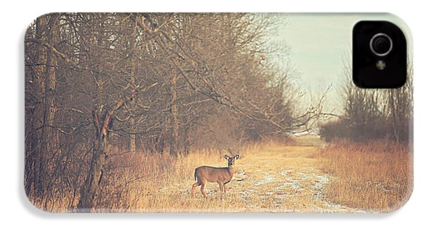 November Deer IPhone 4 Case by Carrie Ann Grippo-Pike