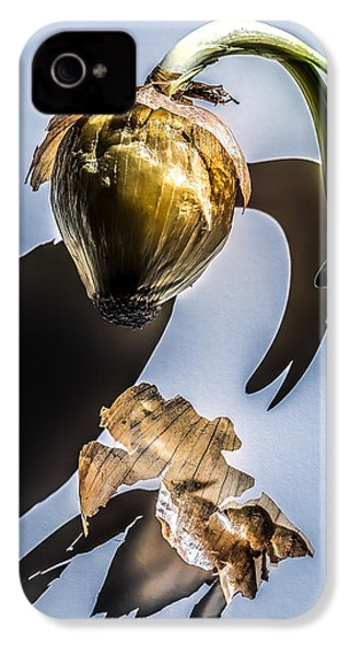 Onion Skin And Shadow IPhone 4 Case by Bob Orsillo