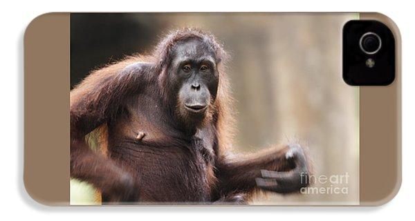 Orangutan IPhone 4 Case by Richard Garvey-Williams