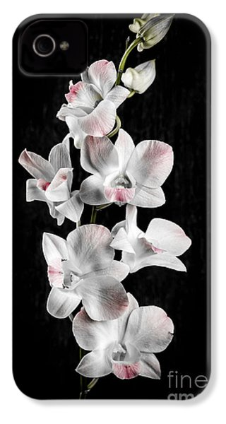 Orchid Flowers On Black IPhone 4 / 4s Case by Elena Elisseeva