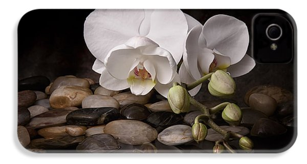 Orchid - Sensuous Virtue IPhone 4 Case