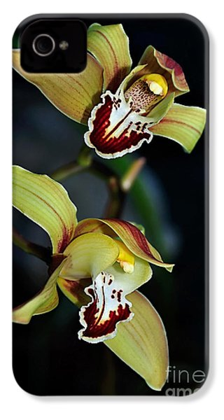 Orchids In The Evening IPhone 4 / 4s Case by Kaye Menner