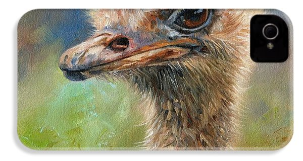 Ostrich IPhone 4 Case by David Stribbling
