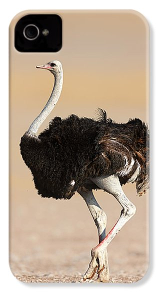 Ostrich IPhone 4 Case by Johan Swanepoel