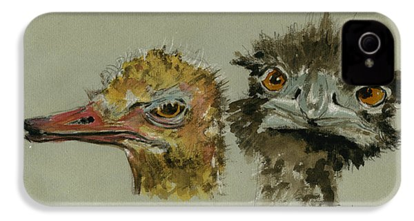 Ostrichs Head Study IPhone 4 Case by Juan  Bosco