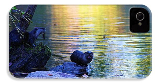 Otter Family IPhone 4 Case by Dan Sproul