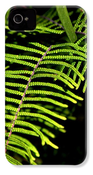 IPhone 4 Case featuring the photograph Pauched Coral Fern by Miroslava Jurcik