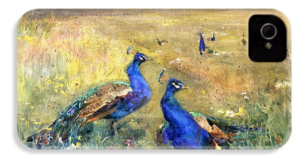 Peacocks In A Field IPhone 4 Case by Mildred Anne Butler