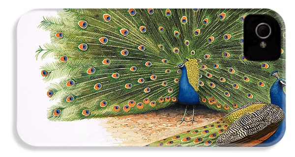 Peacocks IPhone 4 / 4s Case by RB Davis