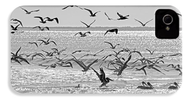 Pelican Chaos IPhone 4 Case by Betsy Knapp