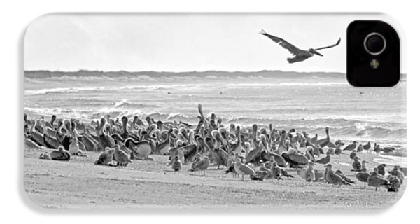Pelican Convention  IPhone 4 Case by Betsy Knapp