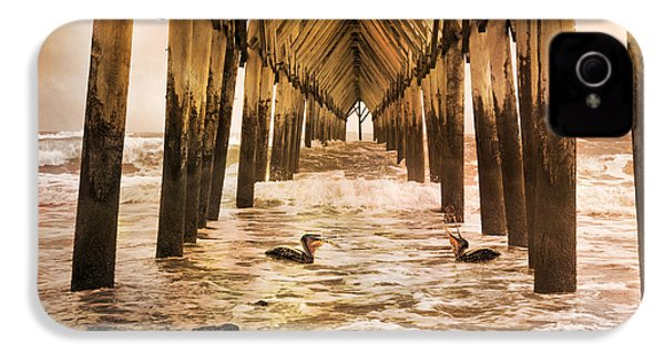Pelican Paradise IPhone 4 / 4s Case by Betsy Knapp