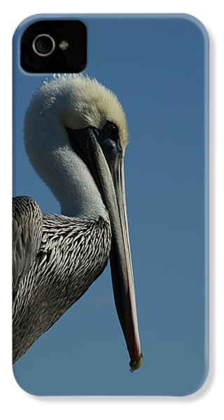 Pelican Profile 2 IPhone 4 / 4s Case by Ernie Echols