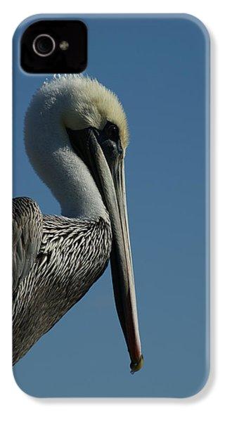 Pelican Profile 2 IPhone 4 / 4s Case by Ernie Echols