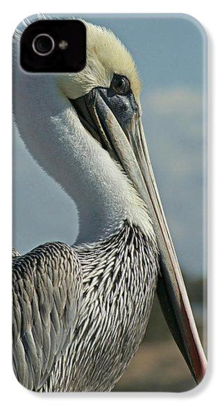 Pelican Profile 3 IPhone 4 Case by Ernie Echols