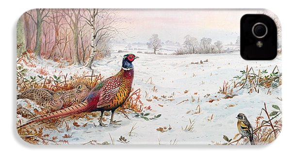 Pheasant And Bramblefinch In The Snow IPhone 4 Case by Carl Donner