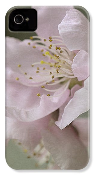Pink Is The Color Of Happiness IPhone 4 Case by Linda Lees