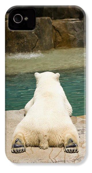 Playful Polar Bear IPhone 4 Case by Adam Romanowicz