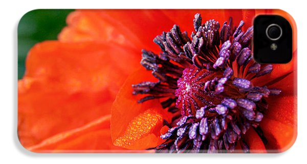 Poppy's Purple Passion IPhone 4 Case by Bill Pevlor