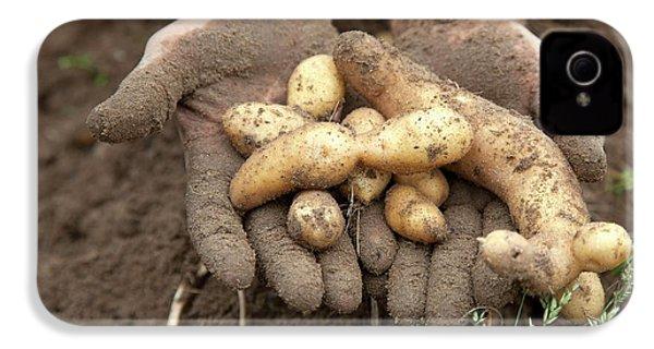 Potato Harvest IPhone 4 / 4s Case by Jim West