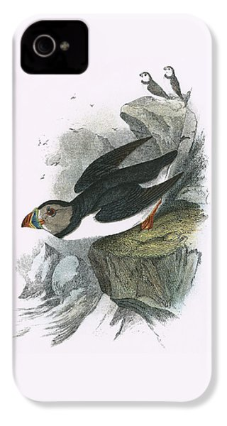Puffin IPhone 4 Case by English School